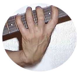 Fully developed guitar fingers by Guitar Principles